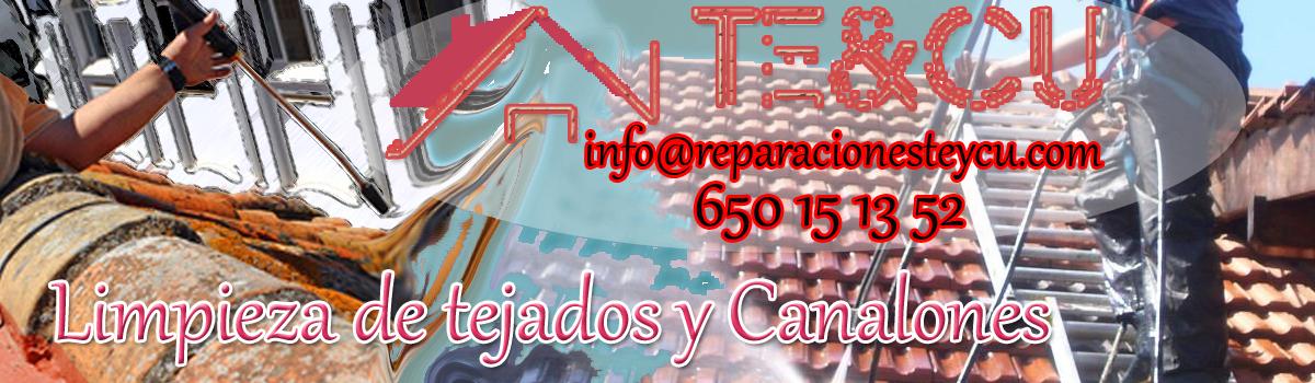 Limpieza de tejados, fachadas y canalones en Madrid